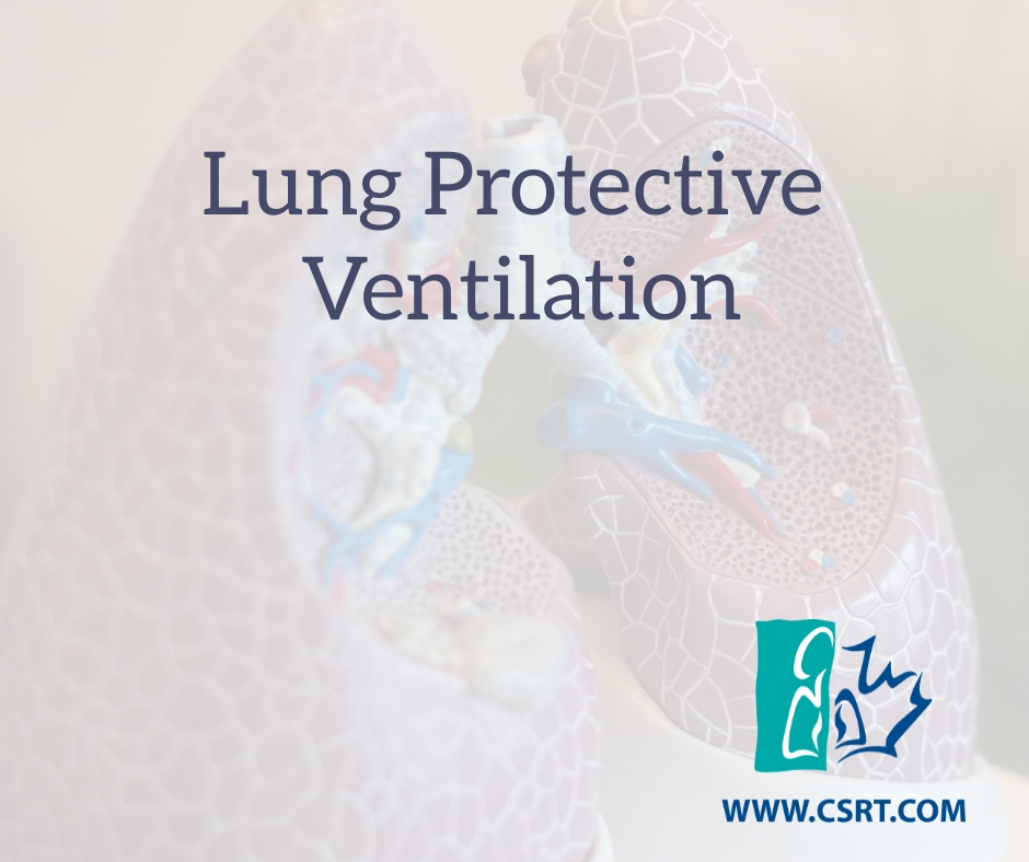 Lung Protective Ventilation (2)