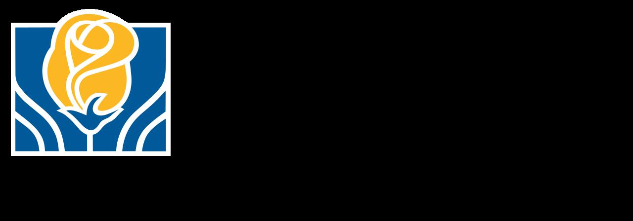 city-of-brampton-logo-wide